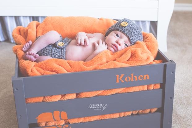 kohen-29wm