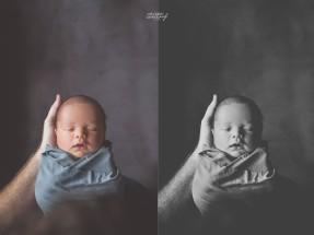 collage1 copy